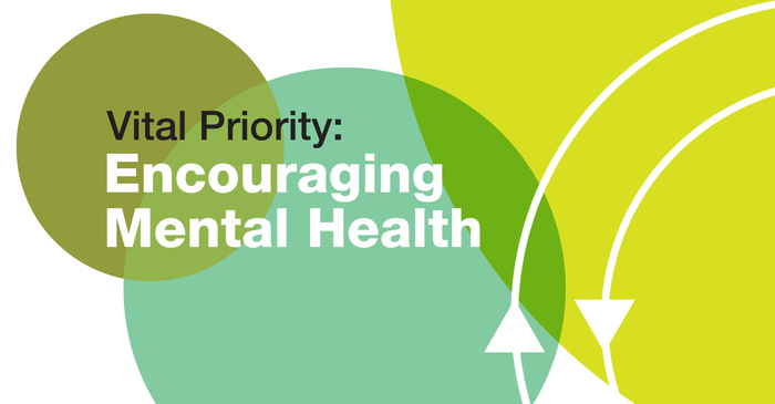 Mental Health Impact Report